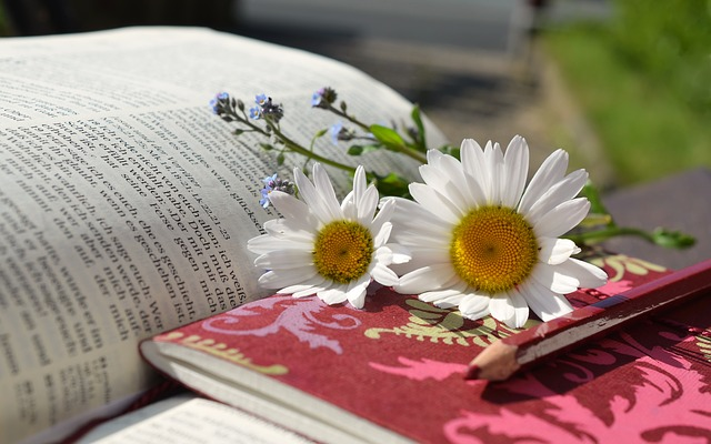 books and flower